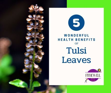 Tulsi Leaves: 5 wonderful health benefits and solutions