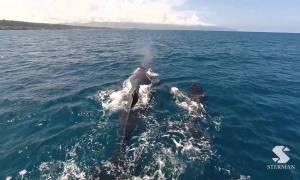 Eric Sterman Drone Video