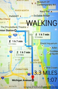 chicago-walking-route-3-3-miles