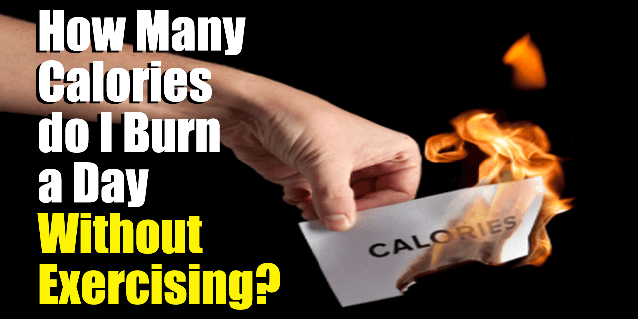 How Many Calories Do I Burn a Day Without Exercising