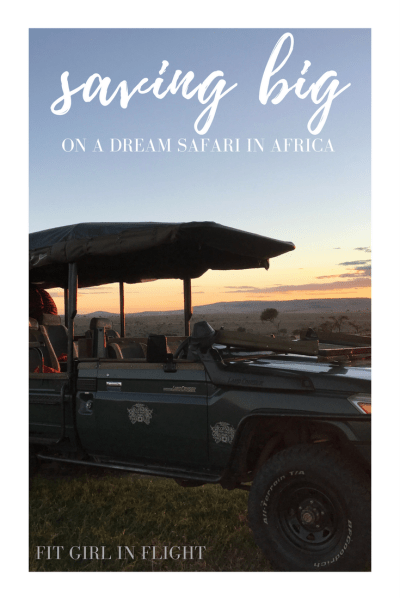 Saving on a dream safari in Africa