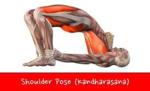 Yoga Poses For Lower Back Pain Relief #2 Shoulder Pose (Kandharasana)