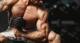 5 Best Bicep Workouts (Backed By Science)