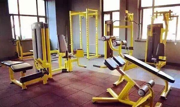 gym quality roman chair wedding cover hire leicester j 026 back extension and muscle workout machine welcome to buy the with our factory known as one of professional manufacturers