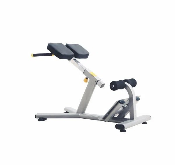 roman chair back extension muscles upholstered posture j 026 and muscle workout gym machine