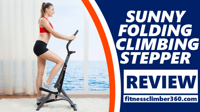 sunny climber stepper review