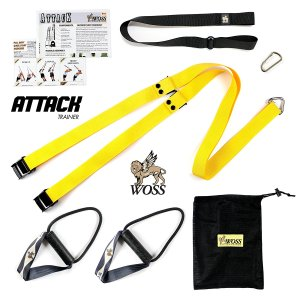 Woss AttacK Trainer Review