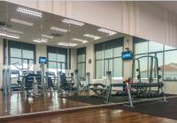 Gym mirrors - Fitness Equipment Ireland | Best for buying ...