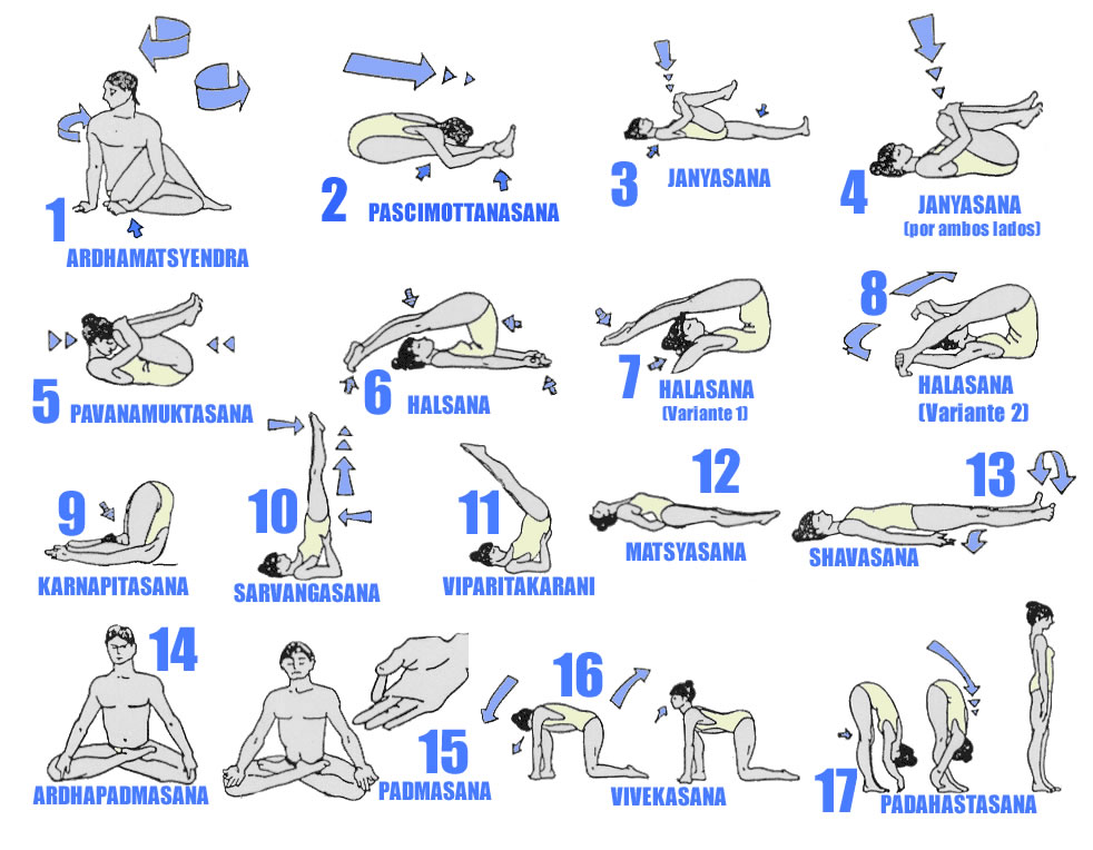 photograph about Printable Yoga Routine titled Hatha Yoga Poses Chart Printable