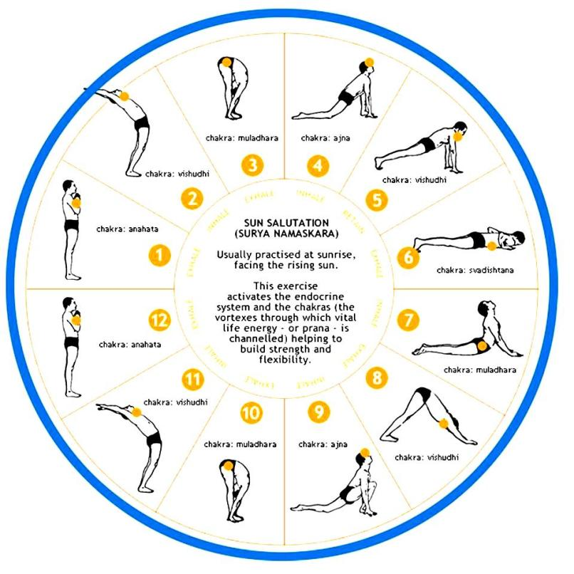 Yoga Poses For Beginners Chart Work Out Picture Media