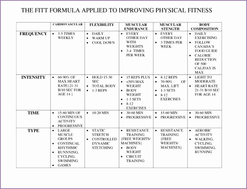 Wonderful Personal Fitness Plan Template Photos  Example Resume