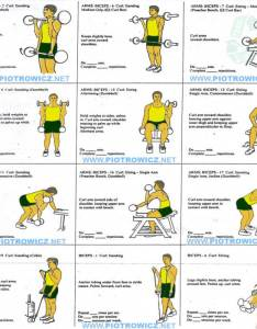 Best biceps exercises workout plan for  big strong bicep arms also rh fitnesshashtag