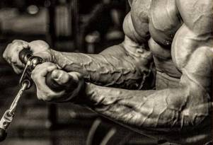 Partial Reps Followed by Full Reps - Intensity Your Home Workouts - Fitness HN