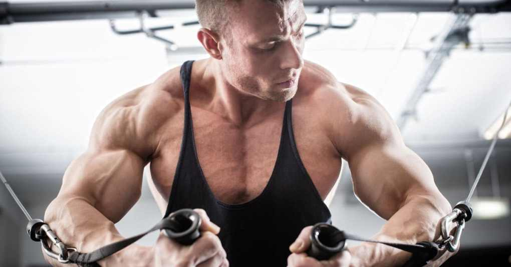 Chest Monday - Warum alle am Montag Brust trainieren 1