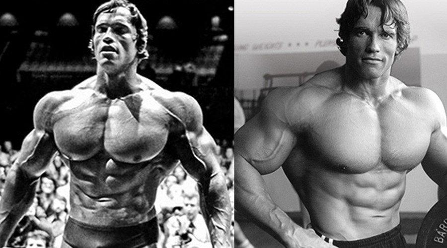 Das Brust- und Rückentraining von Arnold - Fitnessmagnet©