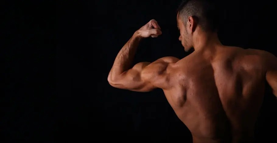 musculation pré-fatigue