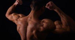 Le guide complet pour pulvériser ses muscles