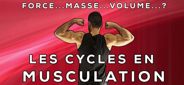 Cycles de force, masse, volume : un moyen de se motiver à court terme
