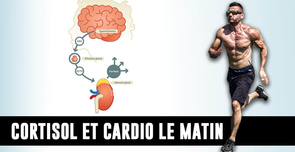 Faut-il profiter du cortisol du matin pour s'entraîner ?