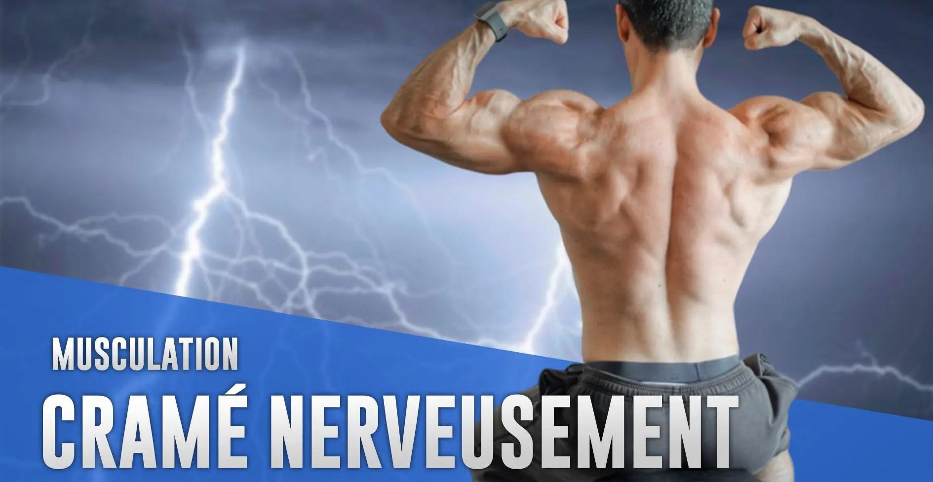 système nerveux musculation