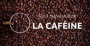 🔒Tout savoir sur la caféine