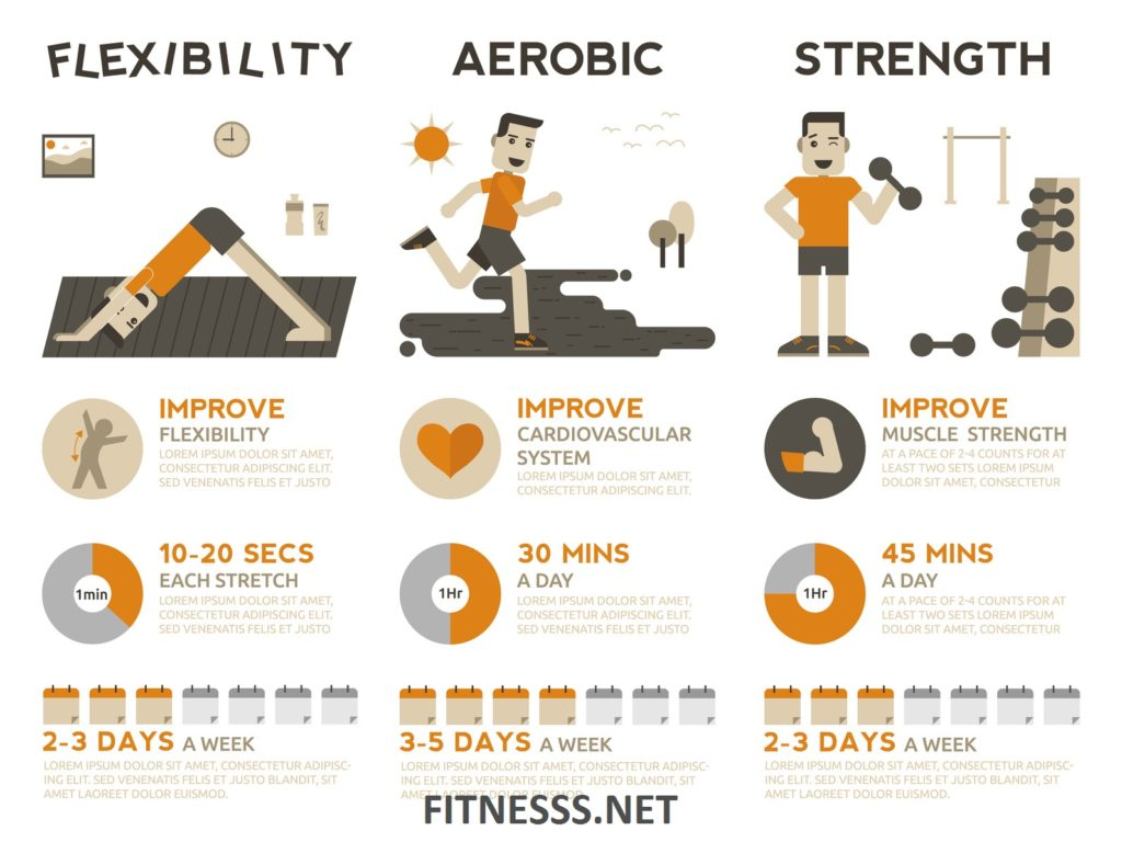 The 5 Components Of Fitness Which Improves Cardiovascular