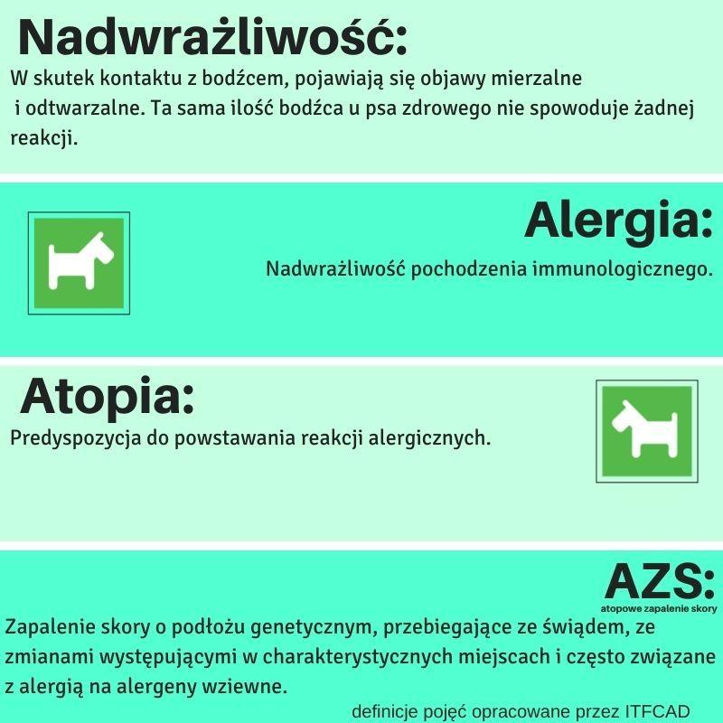 alergia u psa definicje