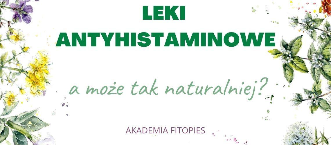 leki antyhistaminowe dla psa akademia fitopies