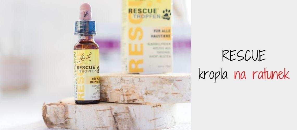 RESCUE - pierwsza pomoc dla psa w sytuacji stresu, szoku, przerażenia