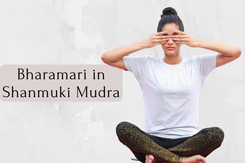 bhramari pranayama in shanmukhi mudra