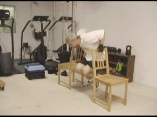 gym chest chair vivere hanging index of metabolic surge exercise database bodyweight lactic acid 2 dips wmv