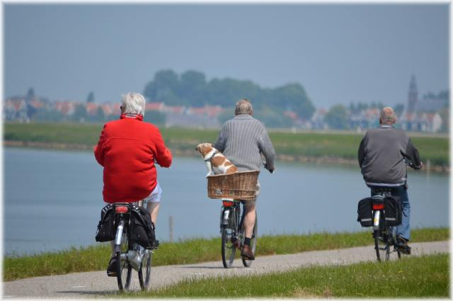 Active Senior Cyclist - Fitness for Seniors