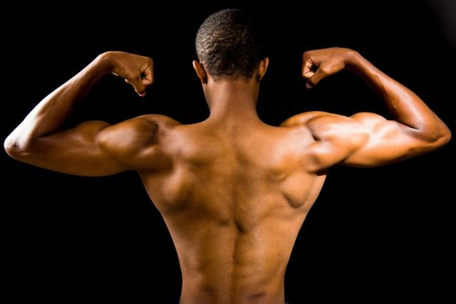 Muscle Groups in the 3 Day Split Workout