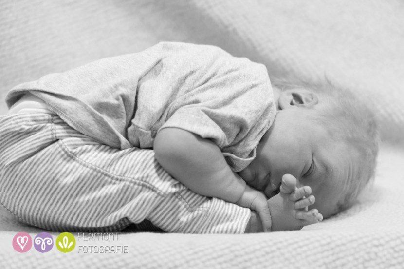 Babies in the womb - Fermont Fotografie-015