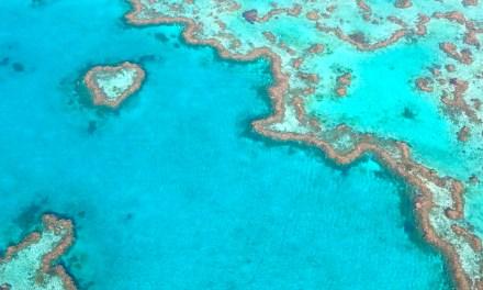 VLOG – Whitsundays islands, merveilles du monde !