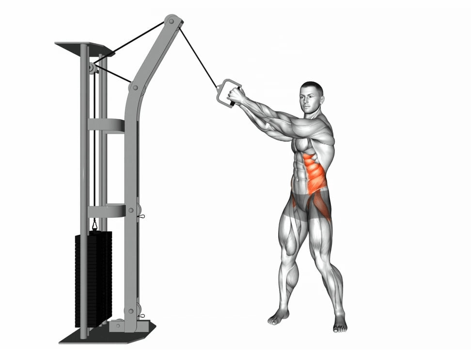 cable wood chopper ab workouts - fitzabout