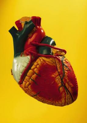 01_cuore.jpg
