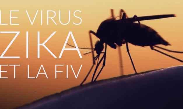 Le virus Zika et la FIV