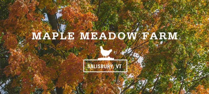 FAF_Web_MM_Header Maple Meadow Farm