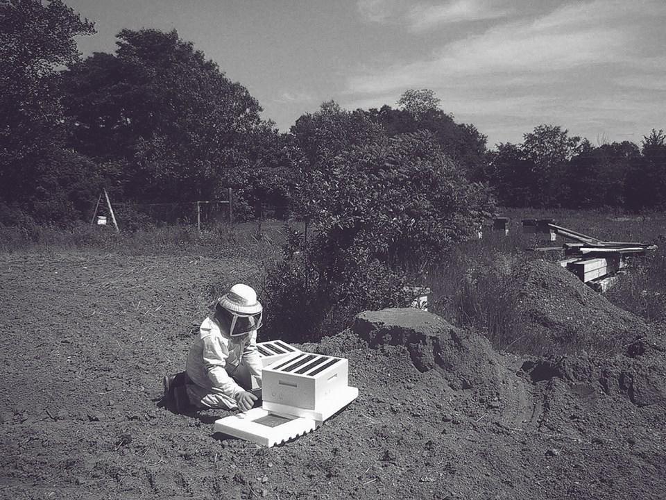 Bee Farmer - Honey Production - Five Acre Farms