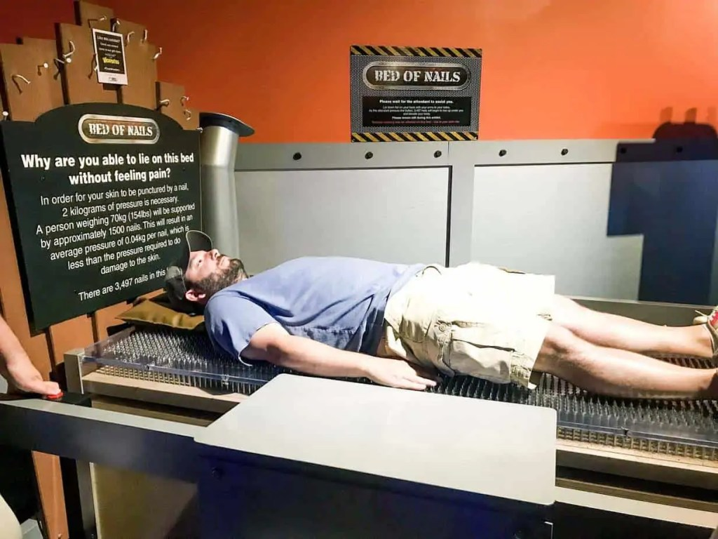 wonderworks bed of nails destiny USA