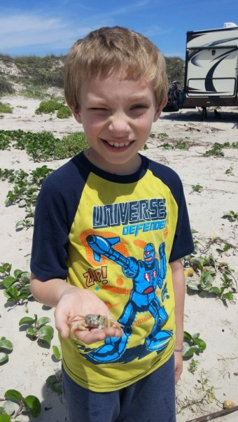 Playing with a ghost crab