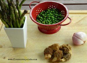 Ricotta Gnocchi - ingredients