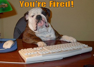 funny-dog-picture-you-are-fired