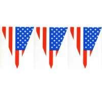 Wimpelkette - USA - Amerika - 10 m | fixefete.de