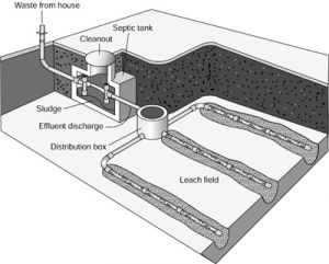 Septic System Repair