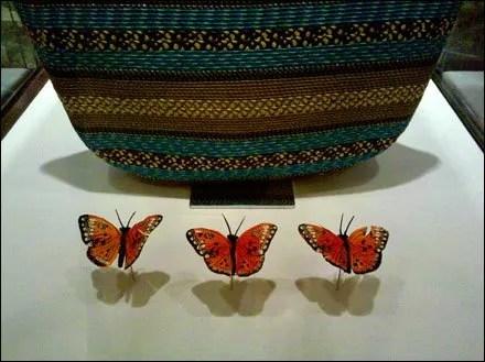 How to Merchandise Butterflies