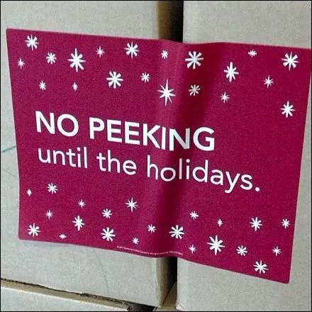 No Peeking until the Holidays Detail