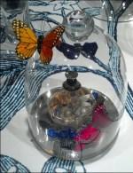 Butterflies Bell Jar Display