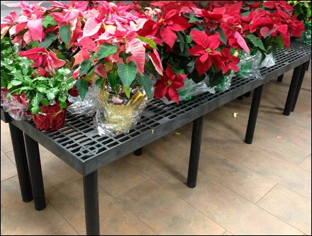 Poinsettia Dunnage Rack Overall